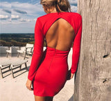 Maryanne Deep V Bodycon Dress