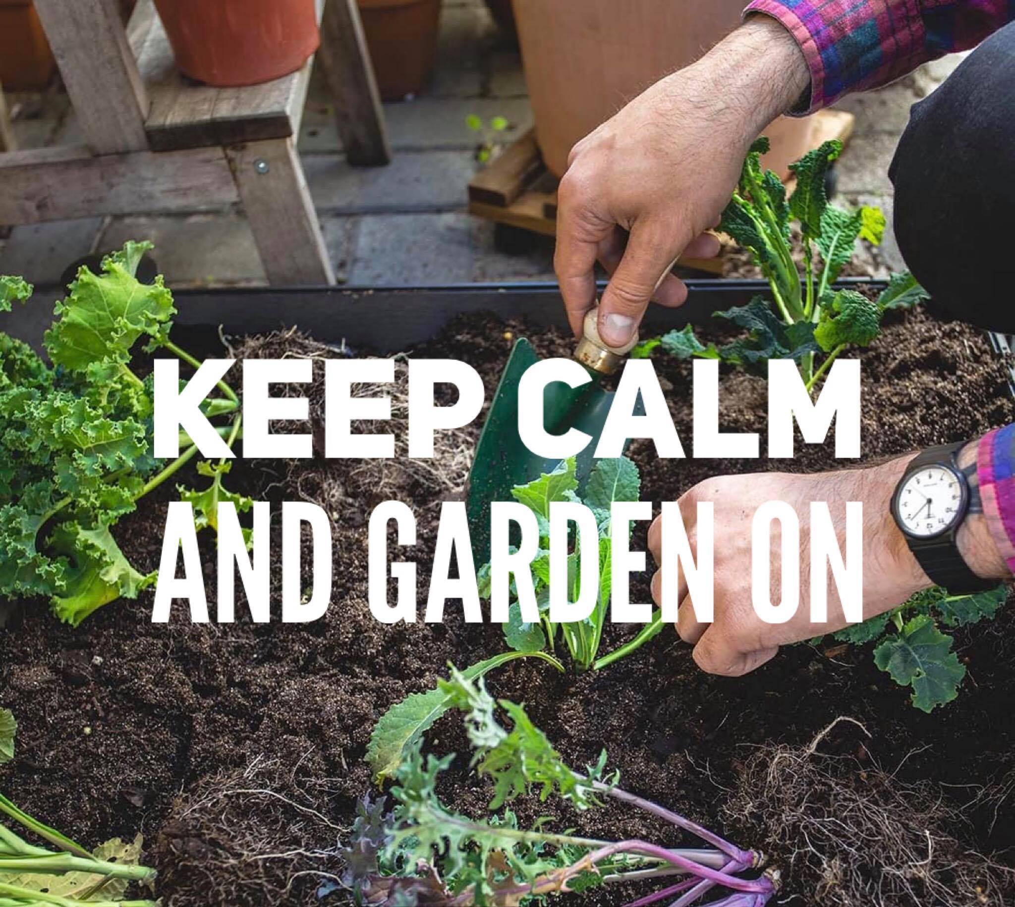 Growing your Victory Garden