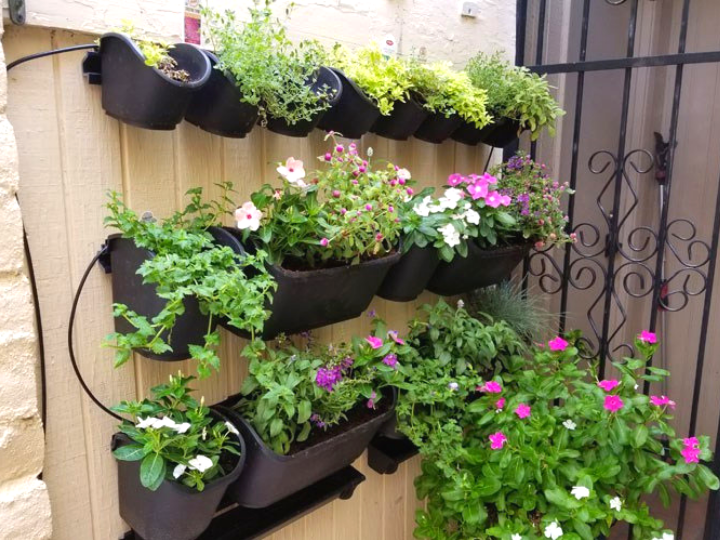 Urban Design Green Wall Kit - Why you should have one this Summer!
