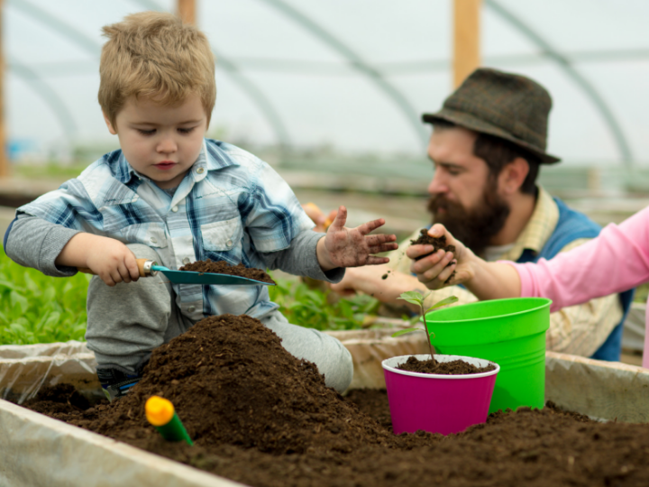 Plan a Kid- friendly Summer Garden!
