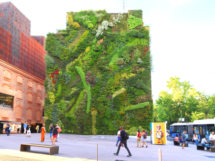 Five Famous Living Walls Around the World