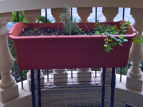 Elevated Mobile Planter