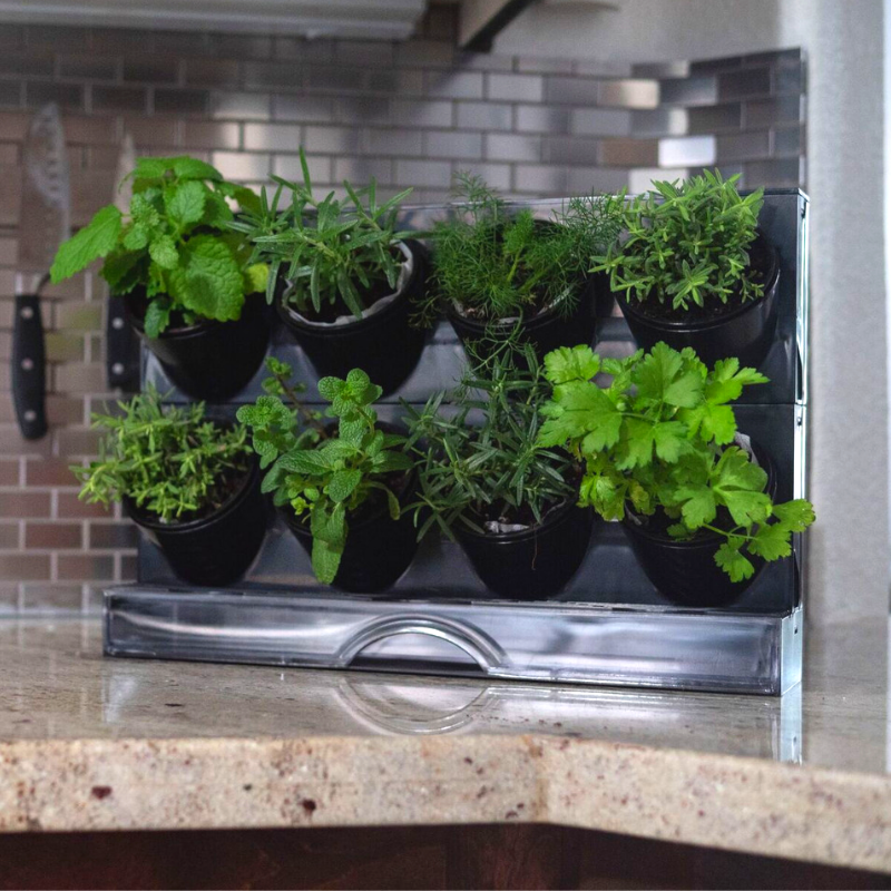 Watex Countertop Garden Indoor Gardening