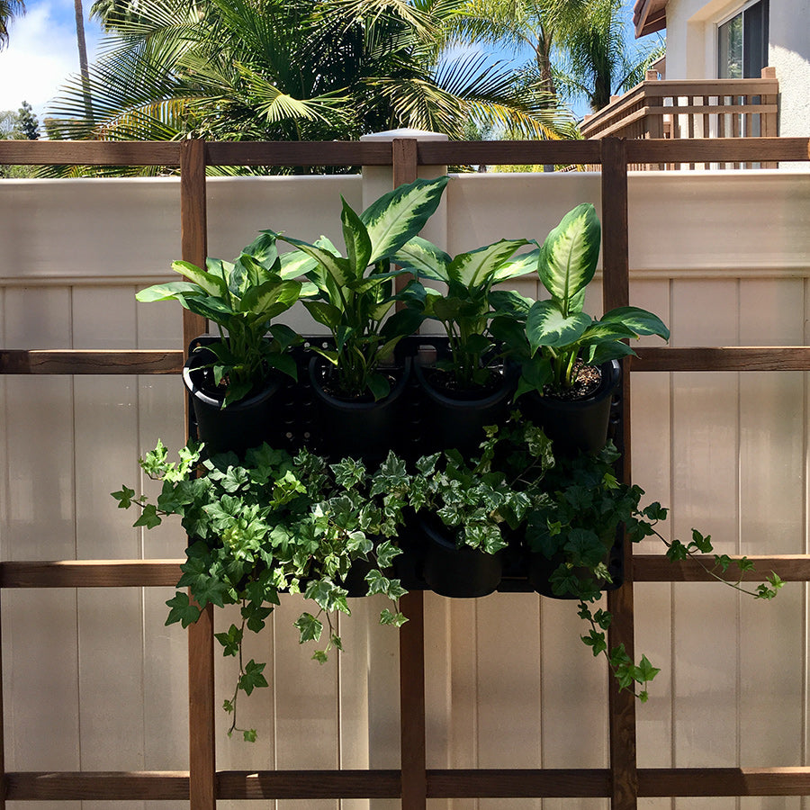 Expandable Green Wall with Built-in Micro Dripper - Single