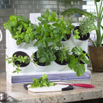 Pixel Kitchen Countertop Garden