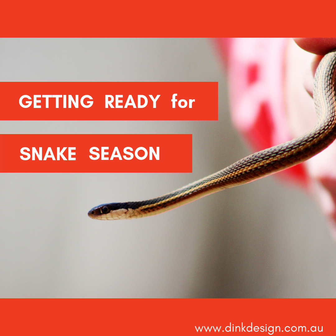 GETTING READY FOR SNAKE SEASON