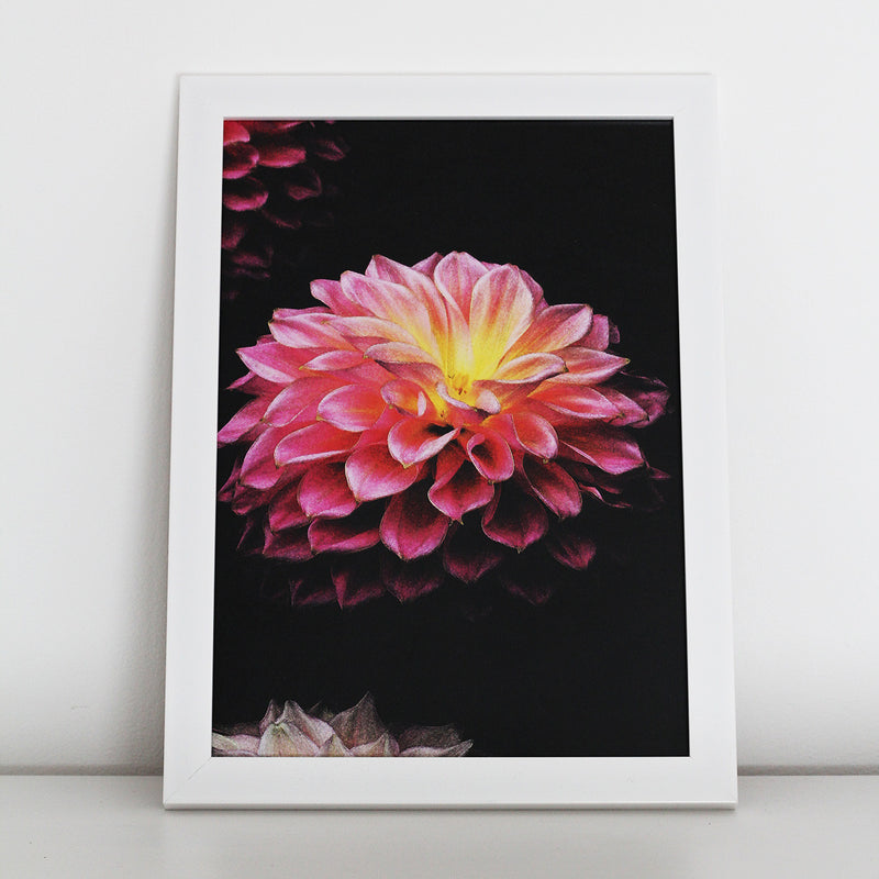 Art print of a dahlia flower available unframed in A4 and A3