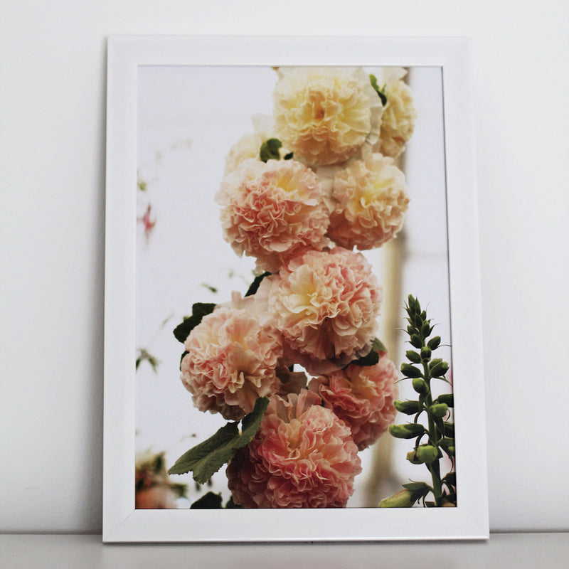 Our peaches n' dreams floral photographical print available unframed in A4 and A3