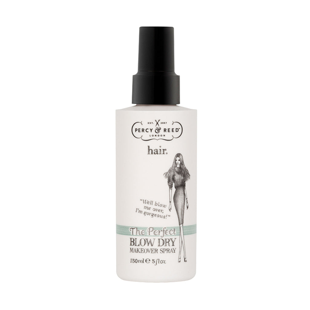 THE PERFECT BLOW DRY MAKEOVER SPRAY