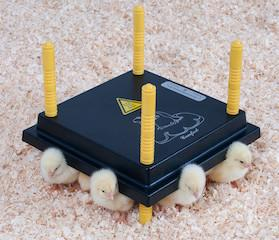 Brooder - Chickplate - 13watt