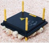 Brooder - Chickplate - 22watt