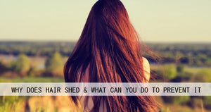 Why Does Hair Shed & What Can You Do to Prevent It?