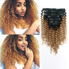 Jerry curl clip in hair extensions ombre N/27# 12"