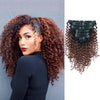 Jerry curl clip in hair extensions ombre N/33# 12"