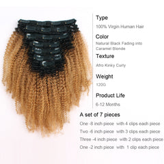 Clip in Hair Extension Afro Kinky Curly Ombre Natural Black to Caramel Blonde