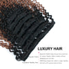 Clip in Hair Extension Kinky Curl Ombre Off Black to Light Auburn