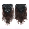 Kinky curly clip in extensions ombre N/4# 14"