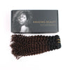 Kinky curly clip in hair extensions ombre N/4# 16"