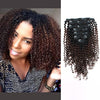 Kinky curly clip in hair extensions ombre N/4# 12"