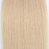 Tape In Hair Extension T #24/#60 Honey Blonde Ombre Ash Blonde