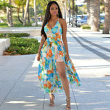 Bird of Paradise Dress Collection