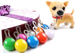Pet LED Night Safety Flash Light Pendants. - love myself deals