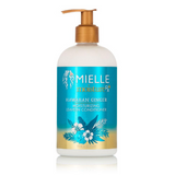 Mielle Organics Hawaiian Ginger Moisturizing Leave-In Conditioner 12 oz. - GABBY'S HAIR