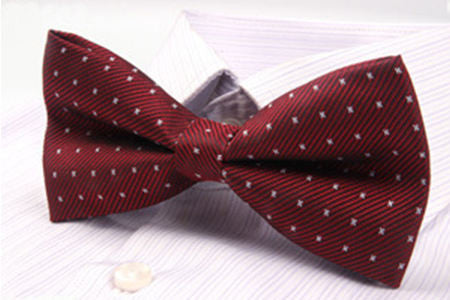 Men's Bow Tie Polyester Polka Dot