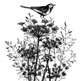 Crafty Individuals - Unmounted Rubber Stamp - 495 - Perching Pied Wigtail Bird
