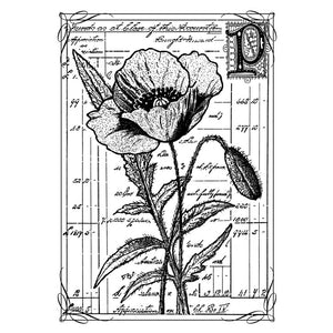 Crafty Individuals - Unmounted Rubber Stamp - 210 - Pretty Poppy