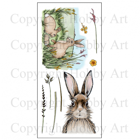 Hobby Art Stamps - Clear Polymer Stamp Set - Hares