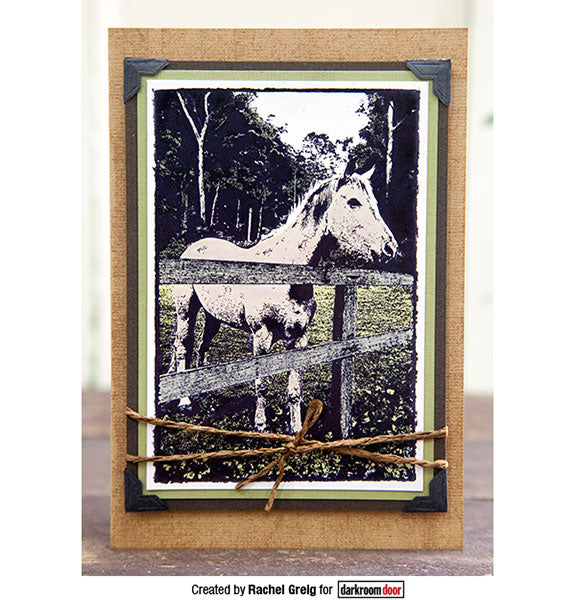 Darkroom Door - Photo Stamp - Horse - Rubber Cling Photo Stamp