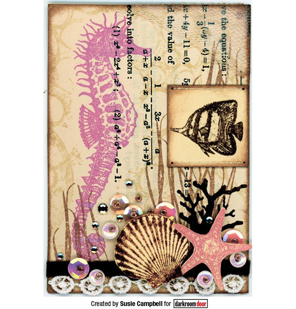 Darkroom Door - Seashells - Red Rubber Cling Stamps