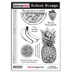 Darkroom Door - Tropical Fruit - Red Rubber Cling Stamps