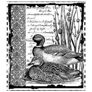 Crafty Individuals - Unmounted Rubber Stamp - 297 - Mallard Duck Pair