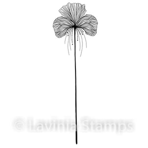 Lavinia - Single Fairy Orchid - Clear Polymer Stamp