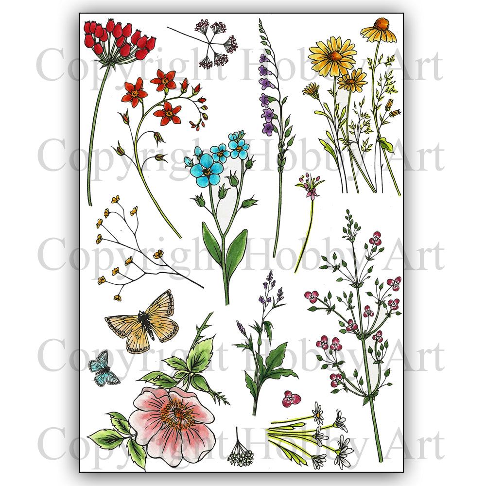Hobby Art Stamps - Clear Polymer Stamp Set - A5 - Wild Meadow