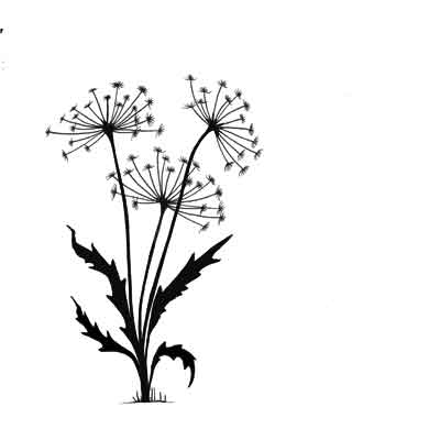 Lavinia - Dandelions 2 - Clear Polymer Stamp