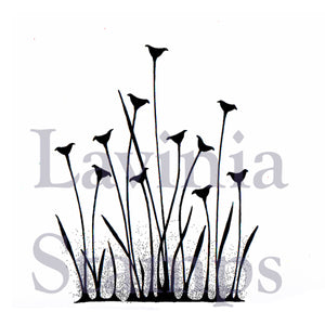 Lavinia - Fairy Buttercups - Clear Polymer Stamp