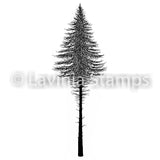 Lavinia - Fairy Fir Tree 2 - Clear Polymer Stamp