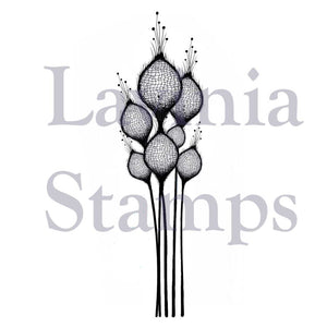 Lavinia - Fairy Thistles- Clear Polymer Stamp