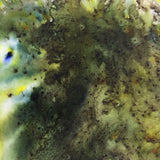 PaperArtsy - Infusions Dye - Olive Tree