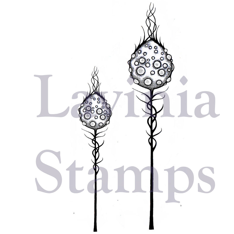 Lavinia - Moon Pods - Clear Polymer Stamp