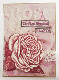 PaperArtsy - Stencil - Scrapcosy PS064 - Rose is Queen of the Garden