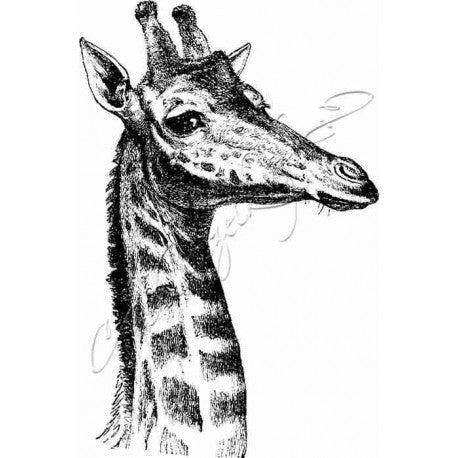 Katzelkraft - SOLO06 - Unmounted Red Rubber Stamp - Giraffe