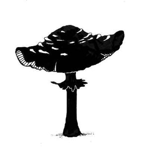 Lavinia - Toadstool - Clear Polymer Stamp