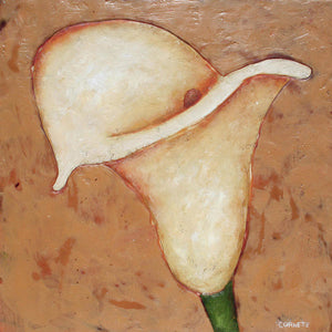 Calla Lily On Sand