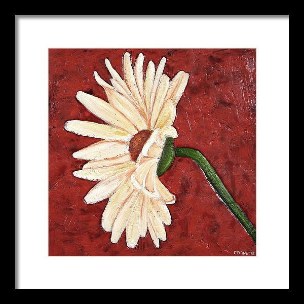 Gerbera Daisy On Coral I