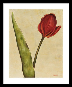 Red Tulip On Cream