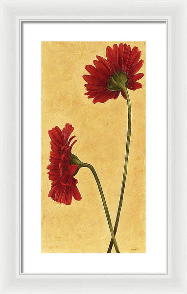 Two Red Gerbera Daisies